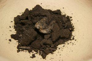 soilclosesm